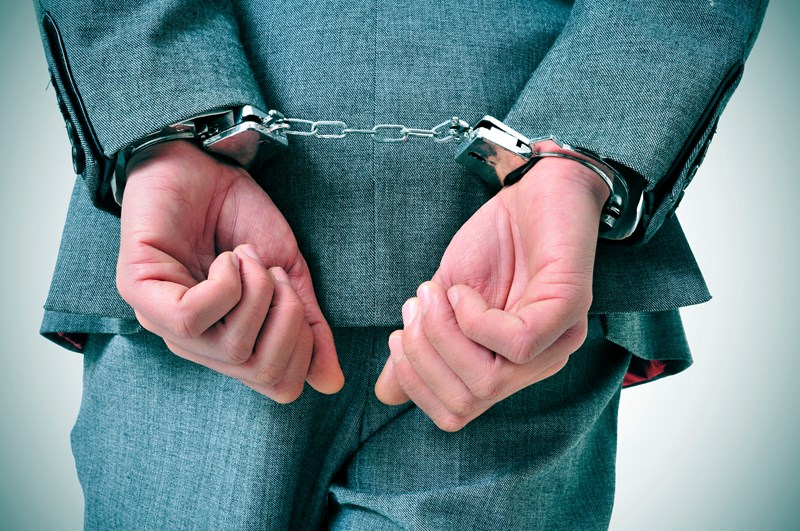 Company director imprisoned