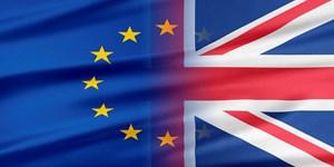 Britain vote to leave the EU