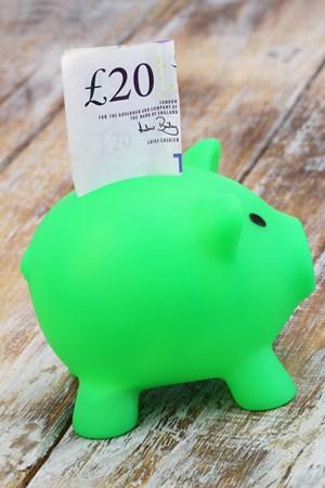 Tax free savings income
